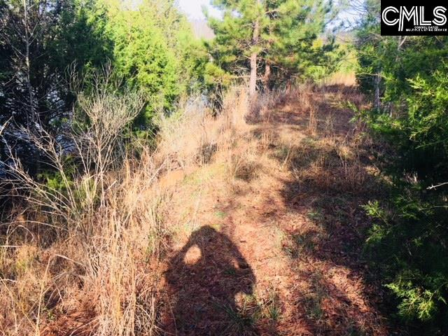 Lot 5 Outback Prosperity, SC 29127