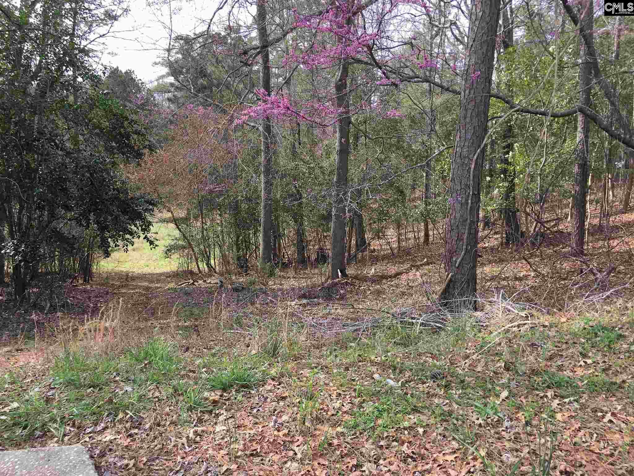 217 Corley Woods Lexington, SC 29072