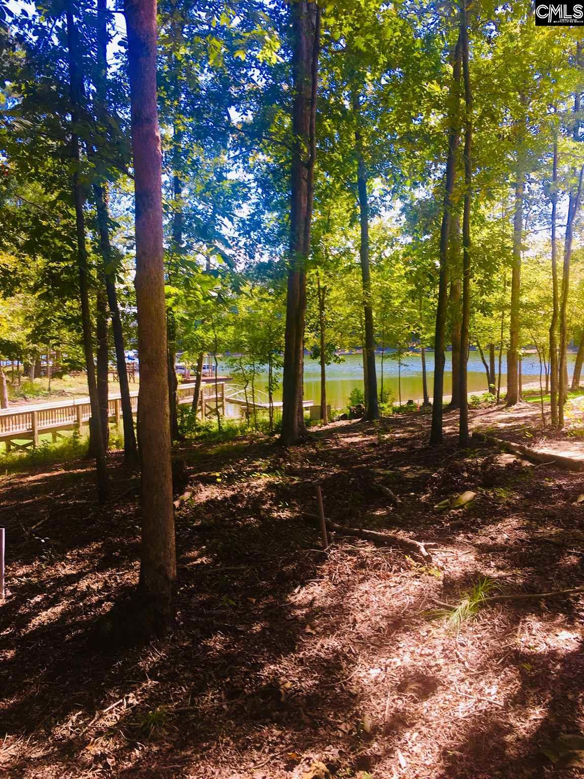 123 Serenity Pointe #Lot #33 Leesville, SC 29070