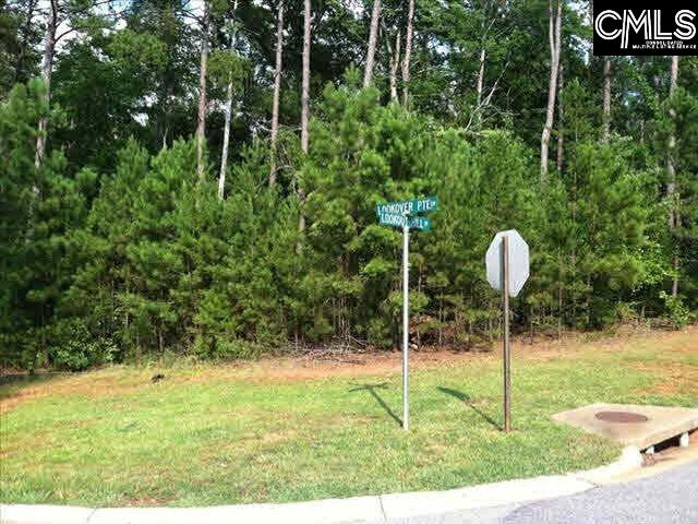 415 Lookover Pointe #69 Chapin, SC 29036