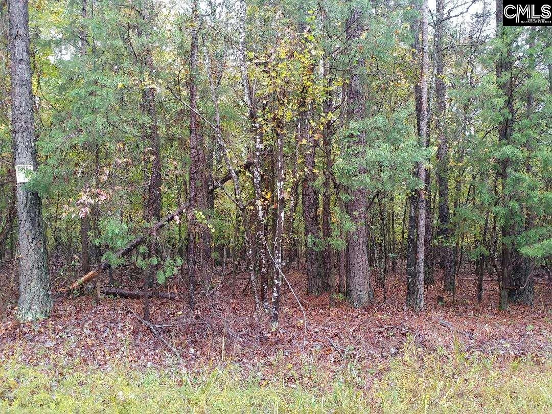 LOT 3 Tbd Hwy And Cowhorn Blythewood, SC 29016