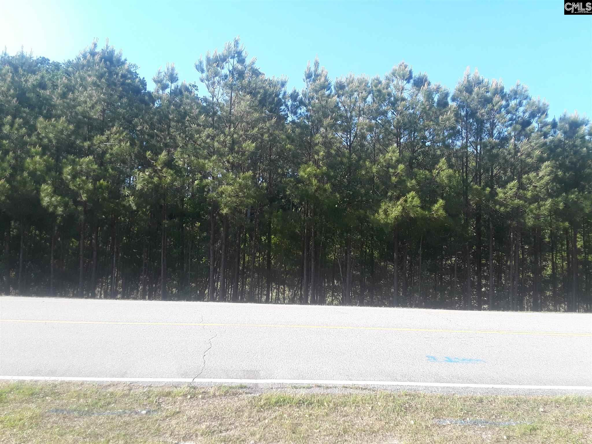 Summer Valley Dr. #B-2 Columbia, SC 29223-4307
