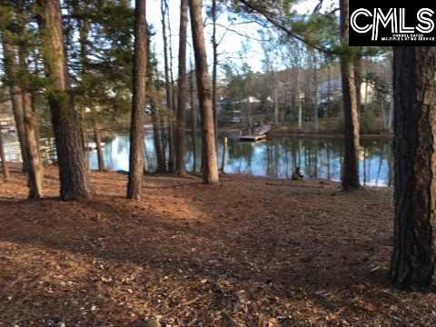 610 Pine Meadow Chapin, SC 29036
