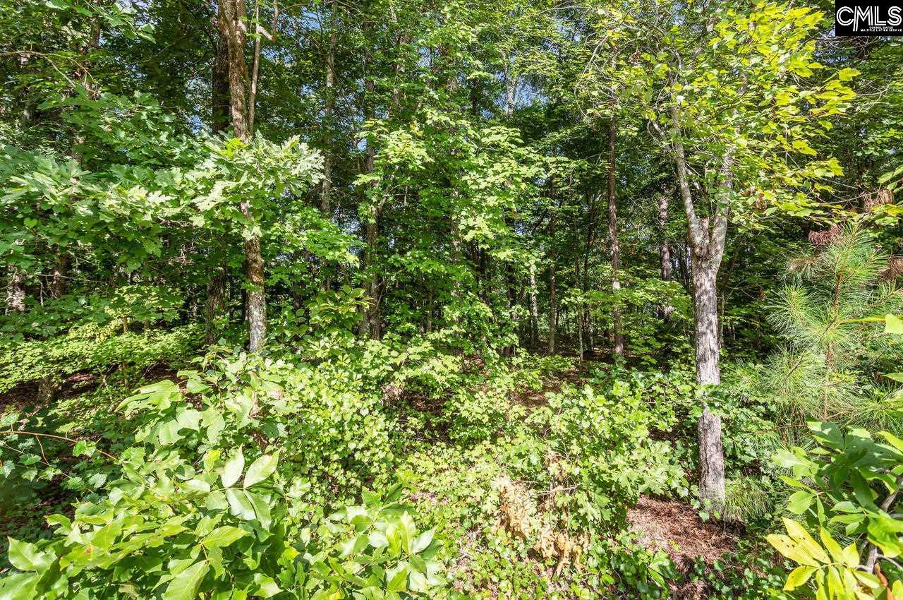 251 Brookwood Forest Blythewood, SC 29016