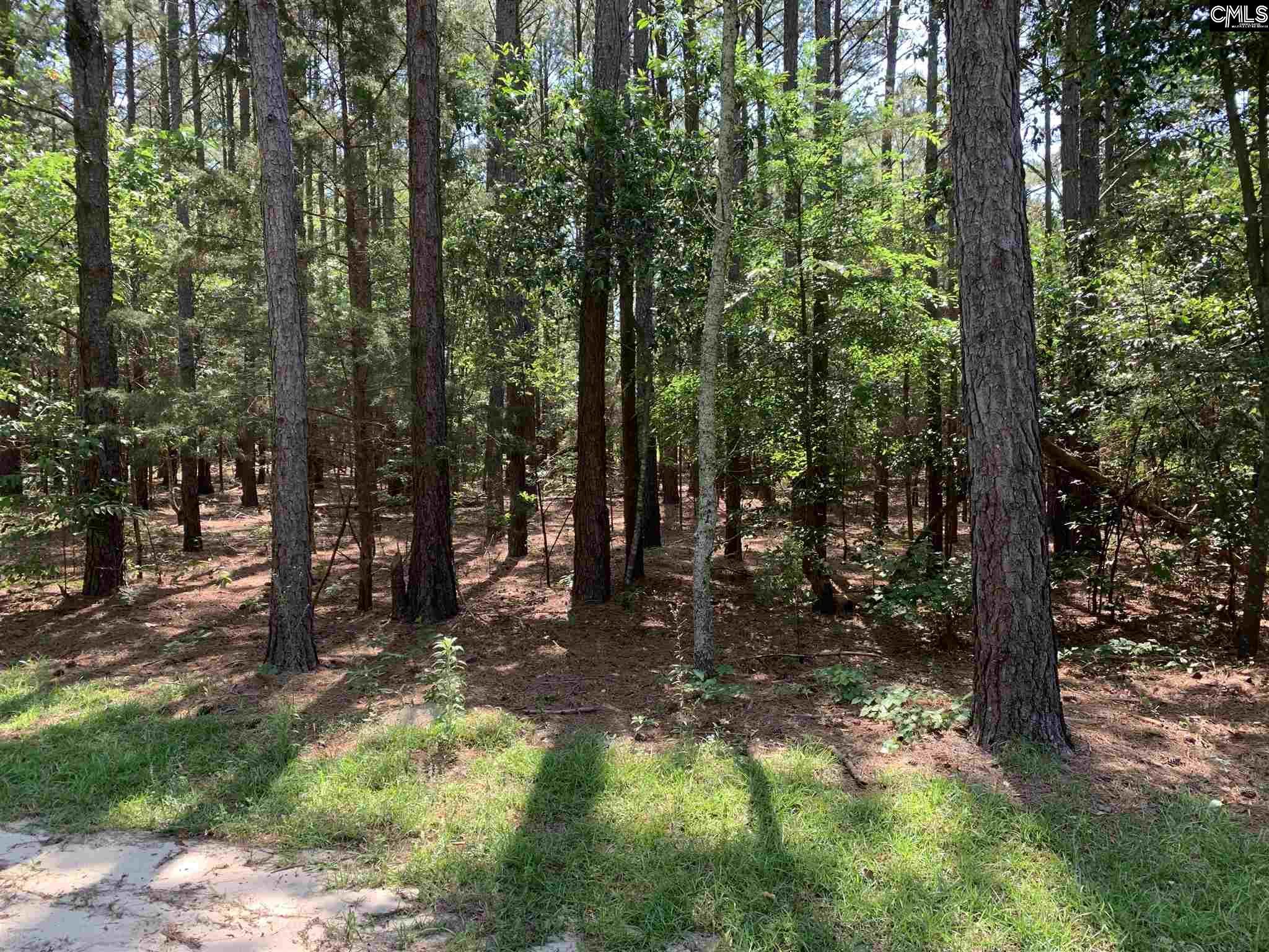 Summit Tall Pines #8 Leesville, SC 29070