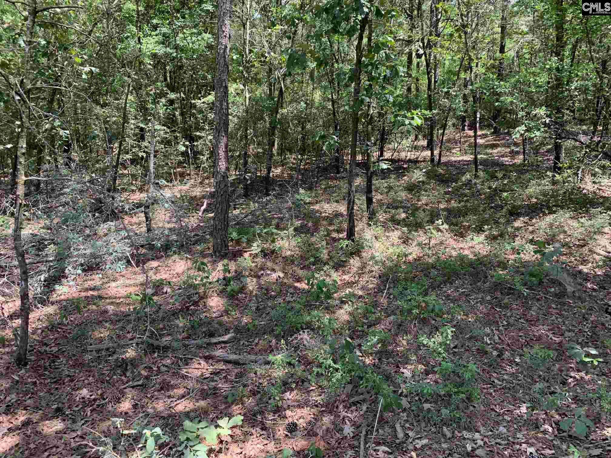 Pine Grove Batesburg, SC 29006
