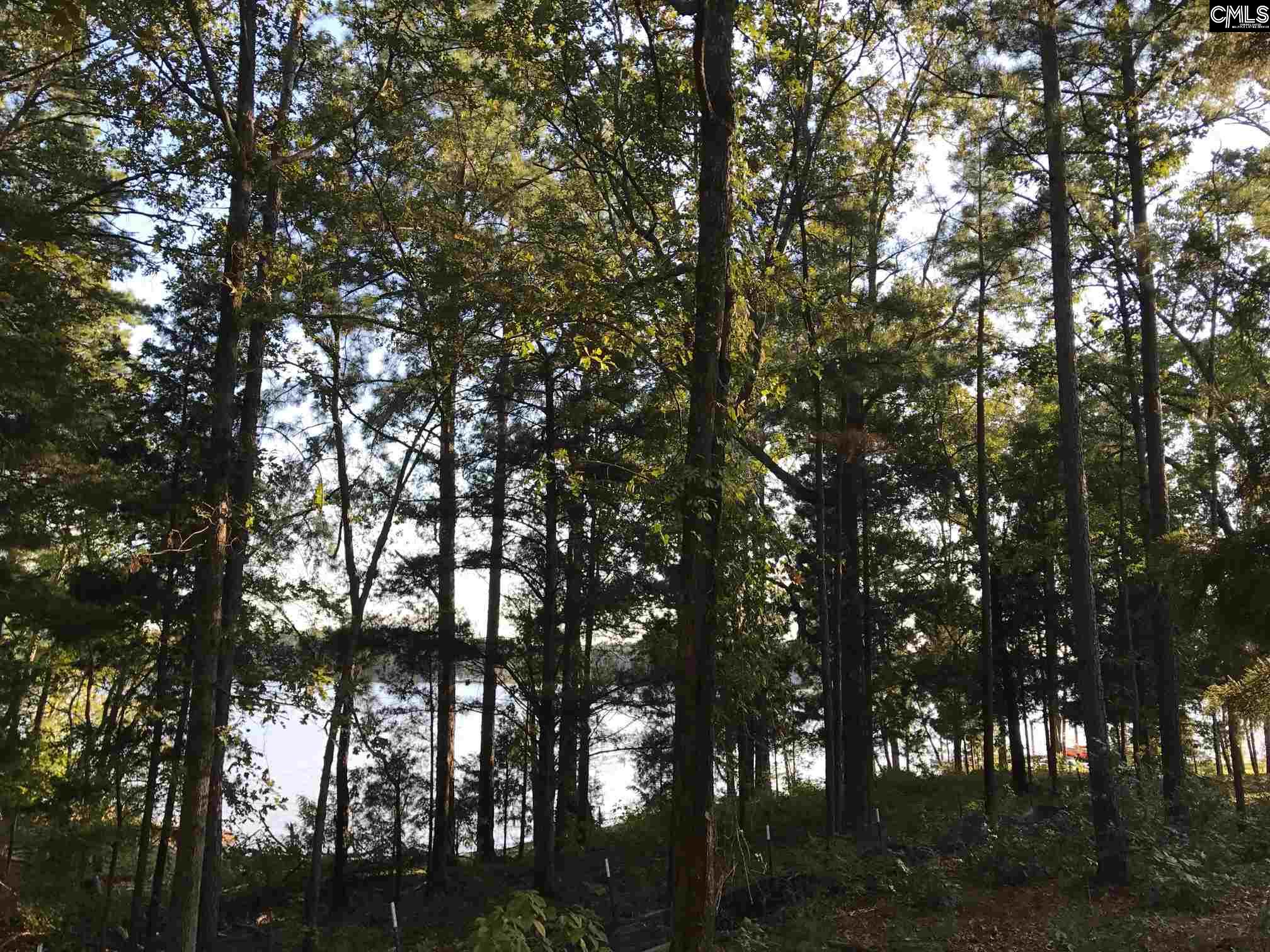 469 Wood Willow #3 Chapin, SC 29036
