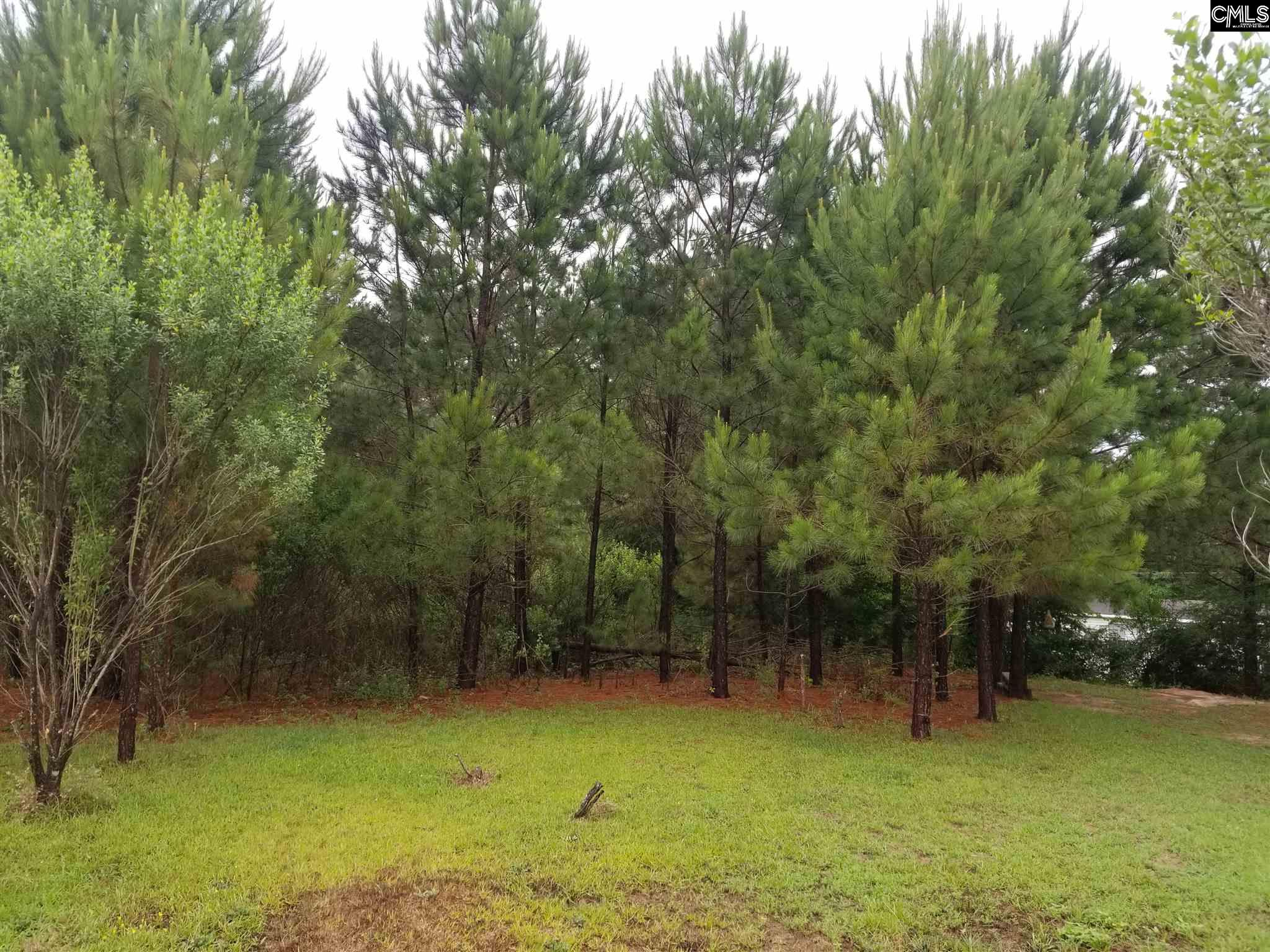 128 Owl Trace Chapin, SC 29036