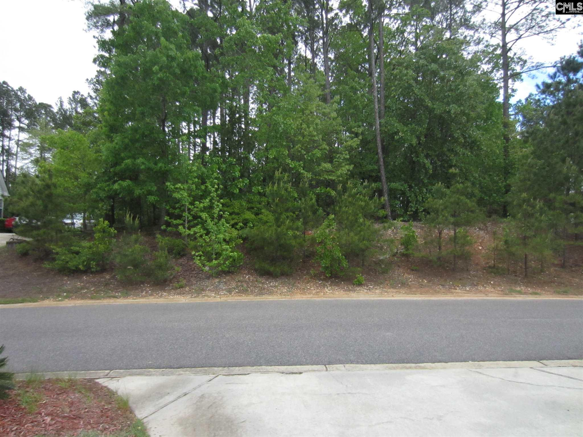 145 Summer Breeze Leesville, SC 29070