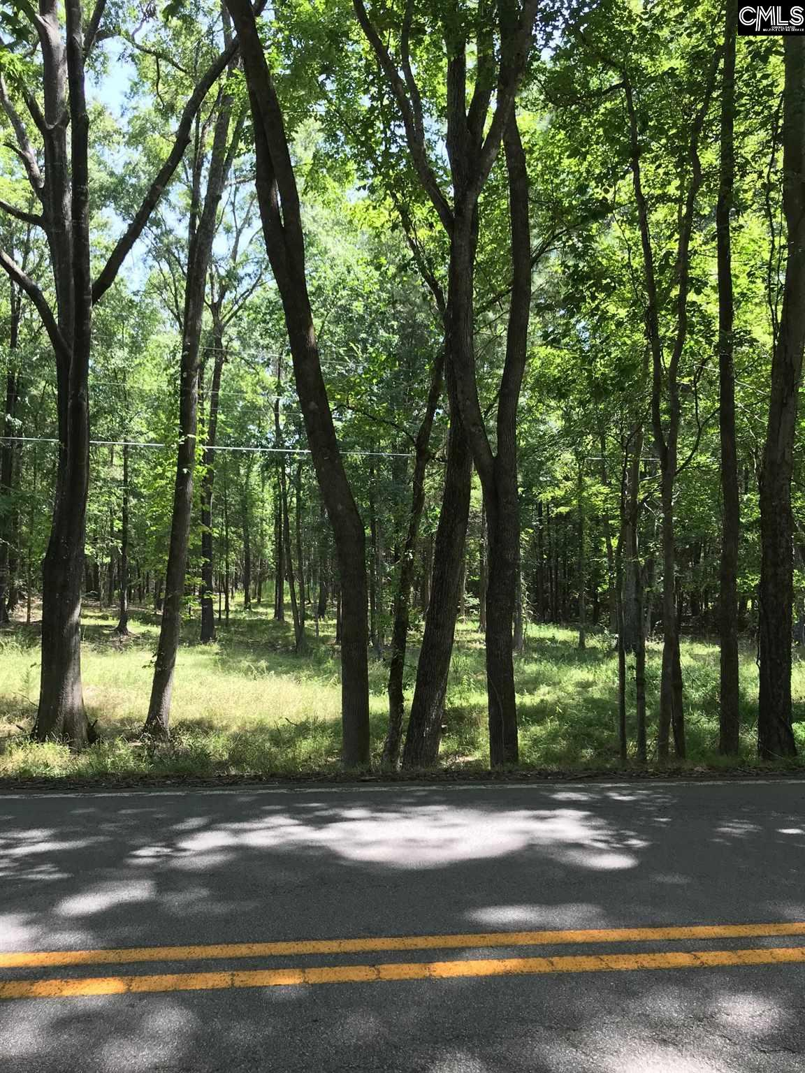 Lot 3 Long Pine Chapin, SC 29036