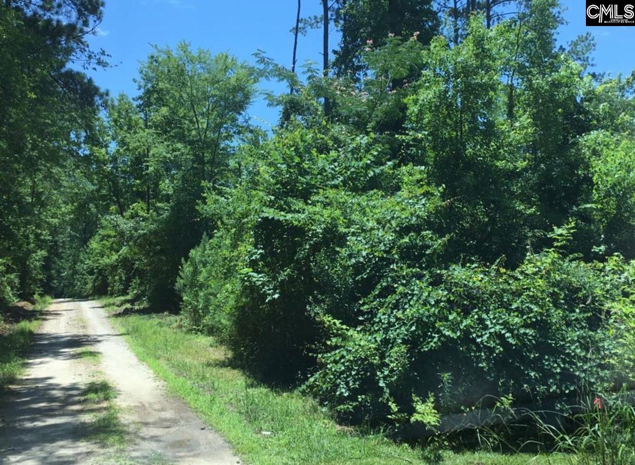 Cove Leesville, SC 29070