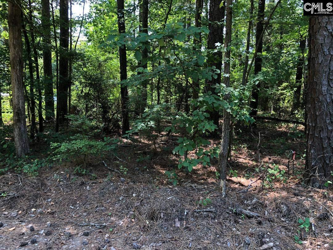 Green Wood #20-21 Leesville, SC 29070