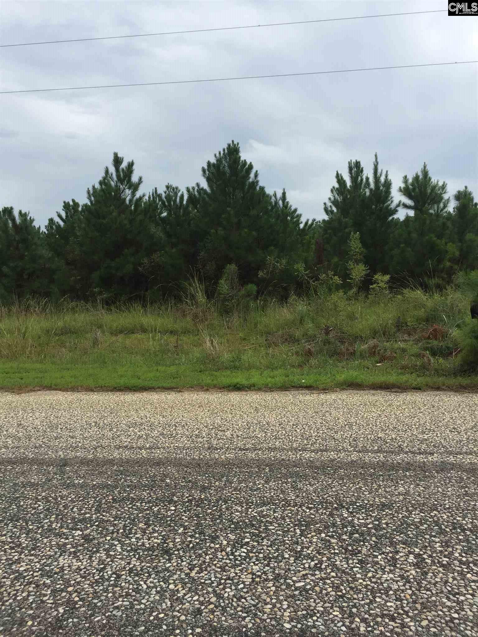 117 Chewning Bishopville, SC 29010