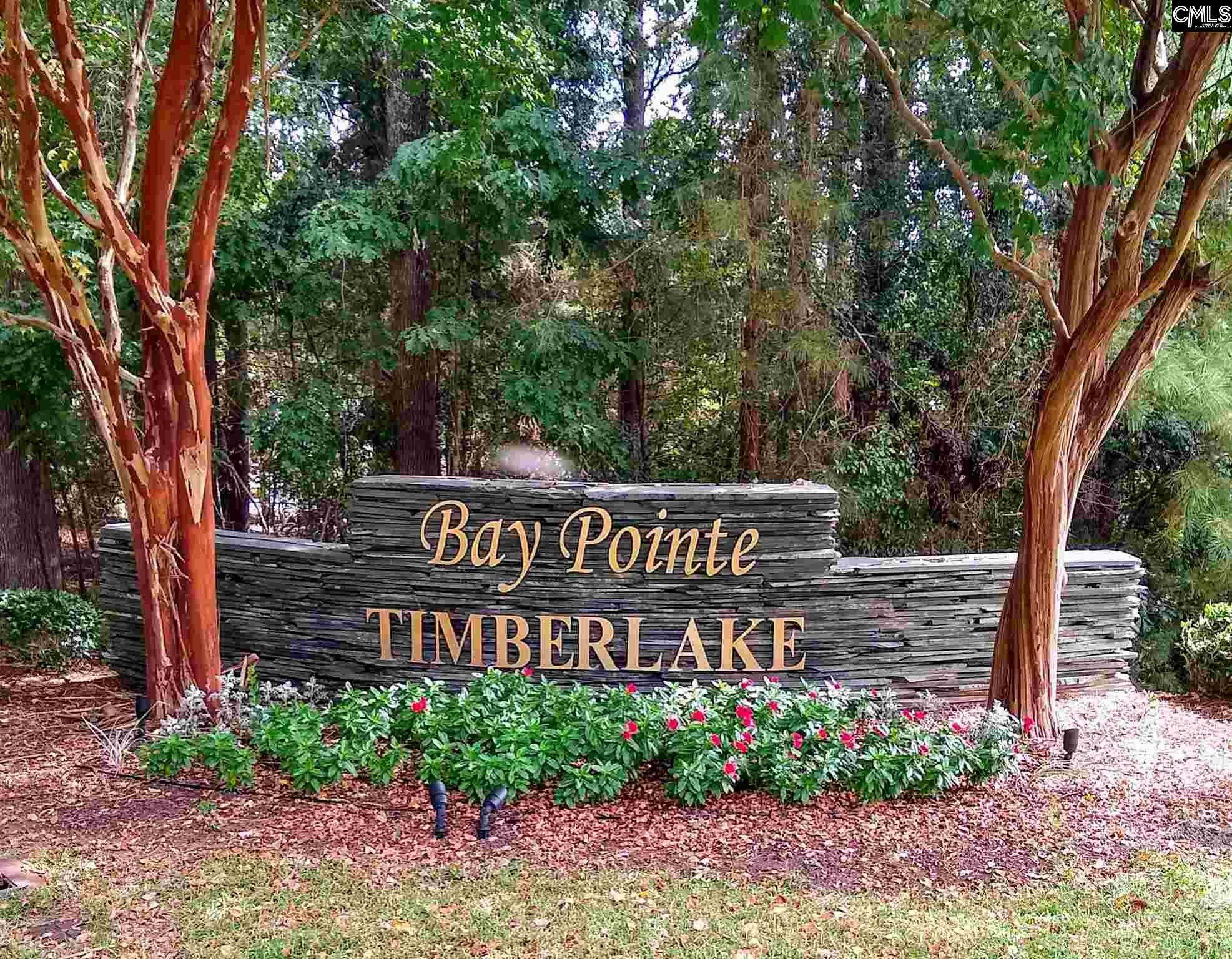 112 Bay Pointe #4 Chapin, SC 29036