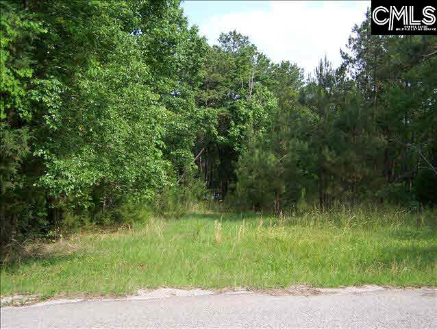 271 Goodlett #Lot #6 Blair, SC 29015