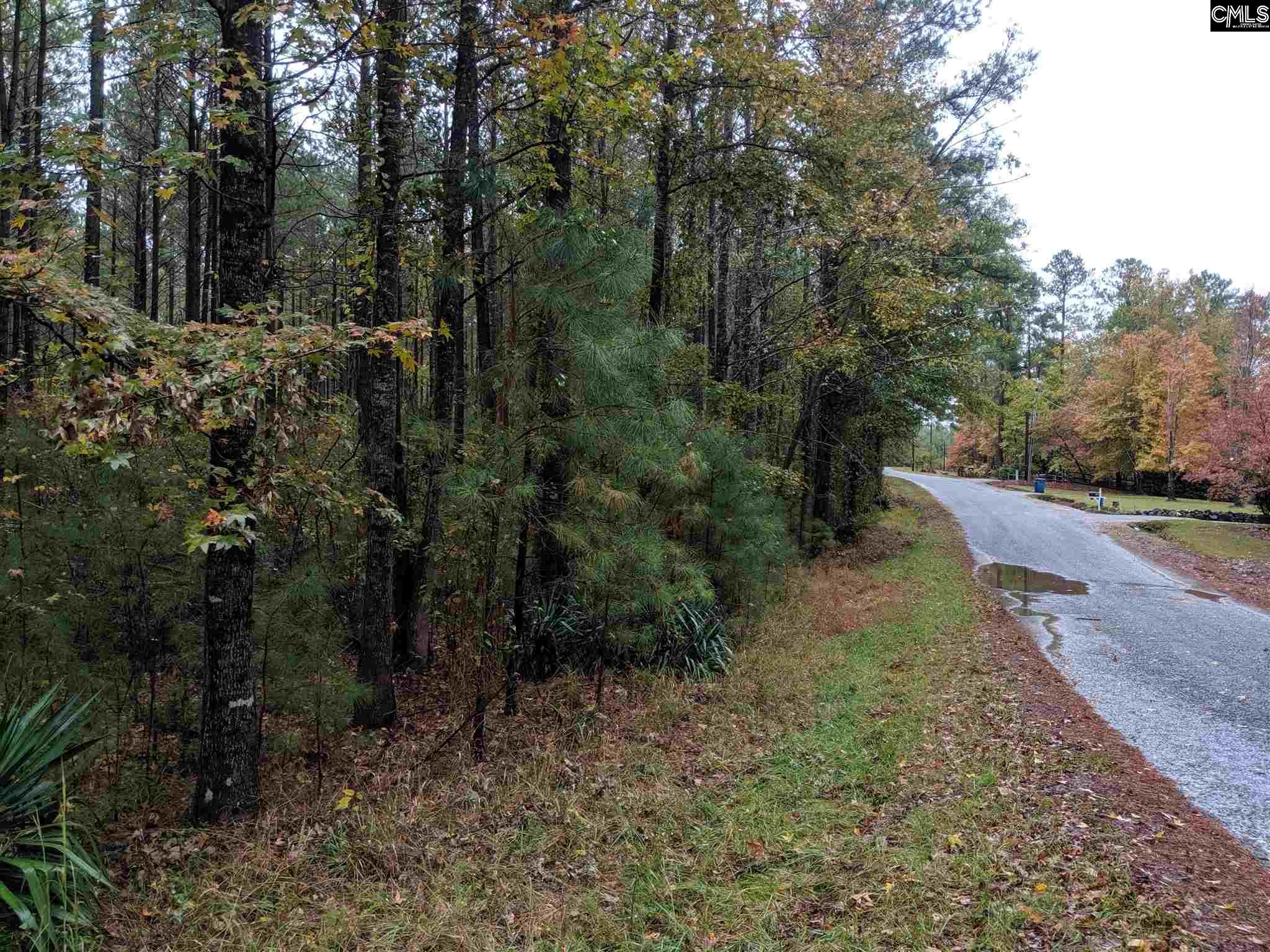 TBD River Rd./ Colonel Creek Dr Ridgeway, SC 29130-0000
