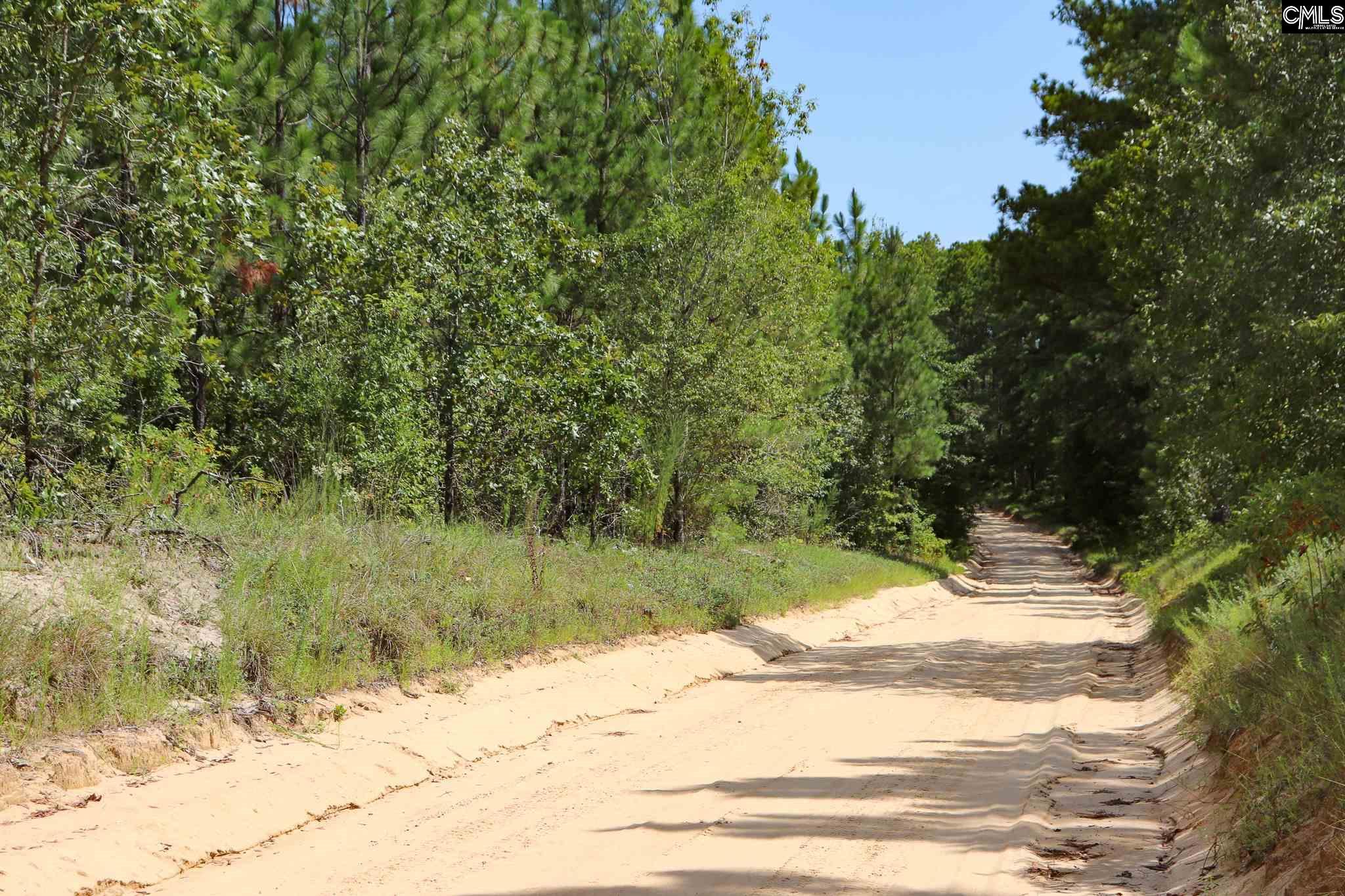 1160 Cotton Branch UNIT 5 Leesville, SC 29070
