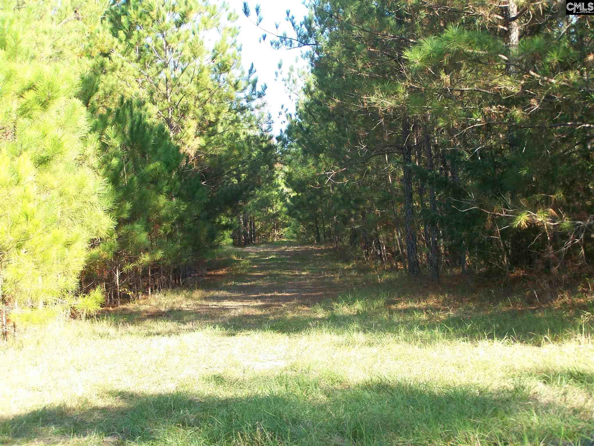 TBD Tract #4 Smallstown Winnsboro, SC 29180
