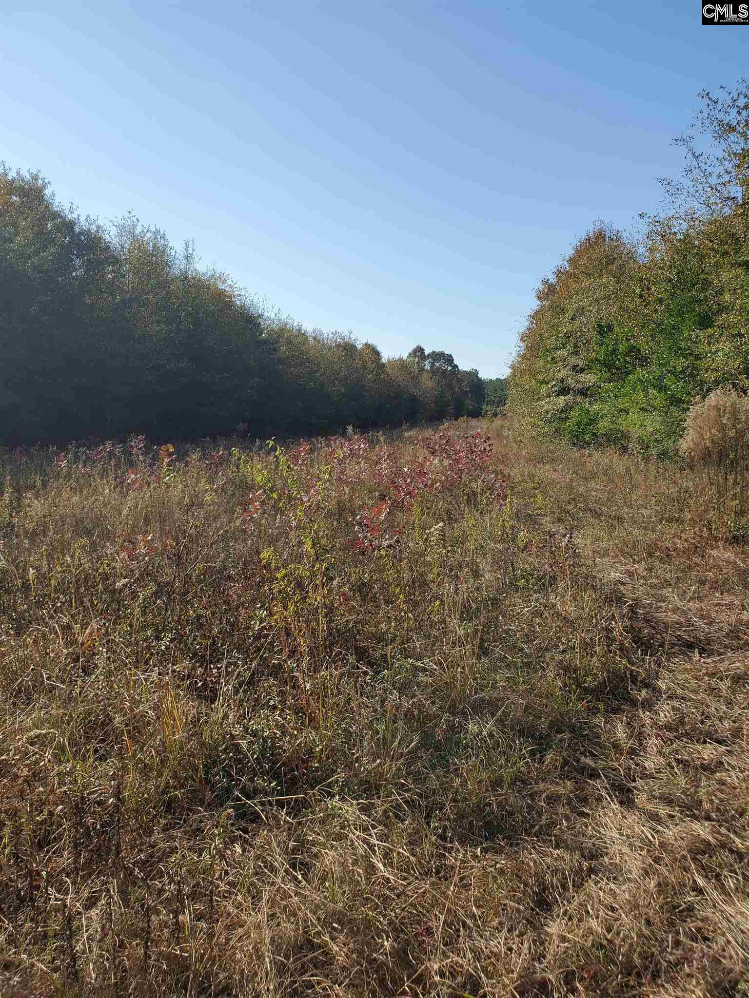 Tract 4 Highway North, SC 29112