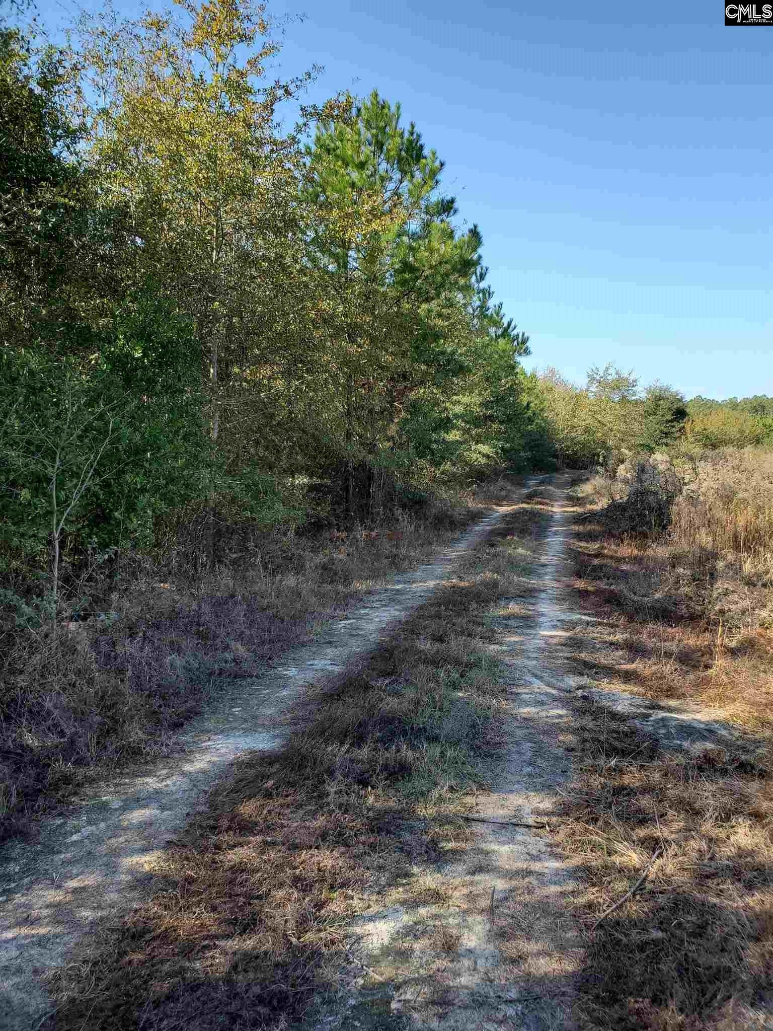Tract 5 Highway North, SC 29112