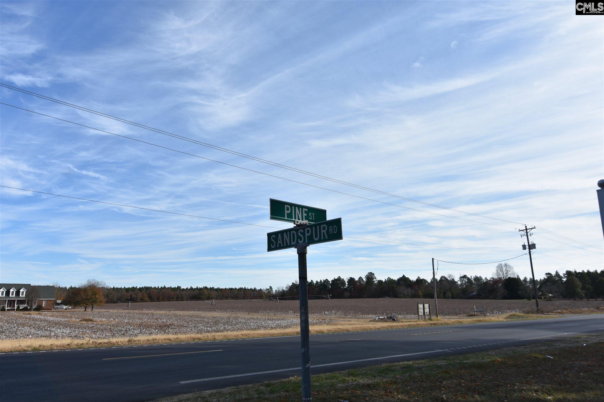 2178 Pine Street Pelion, SC 29123