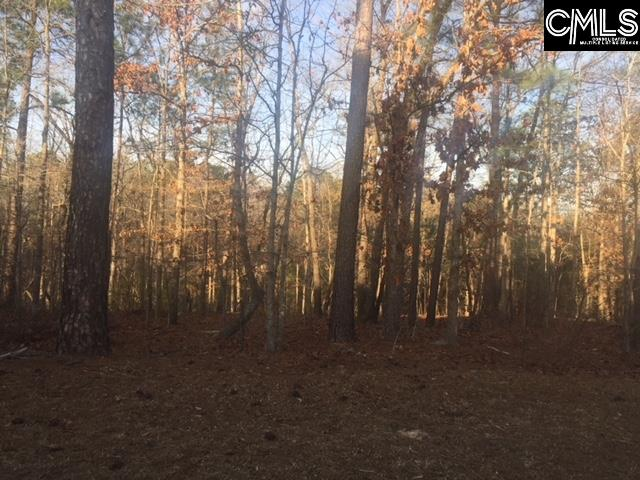 341 Highland Point Drive Columbia, SC 29229