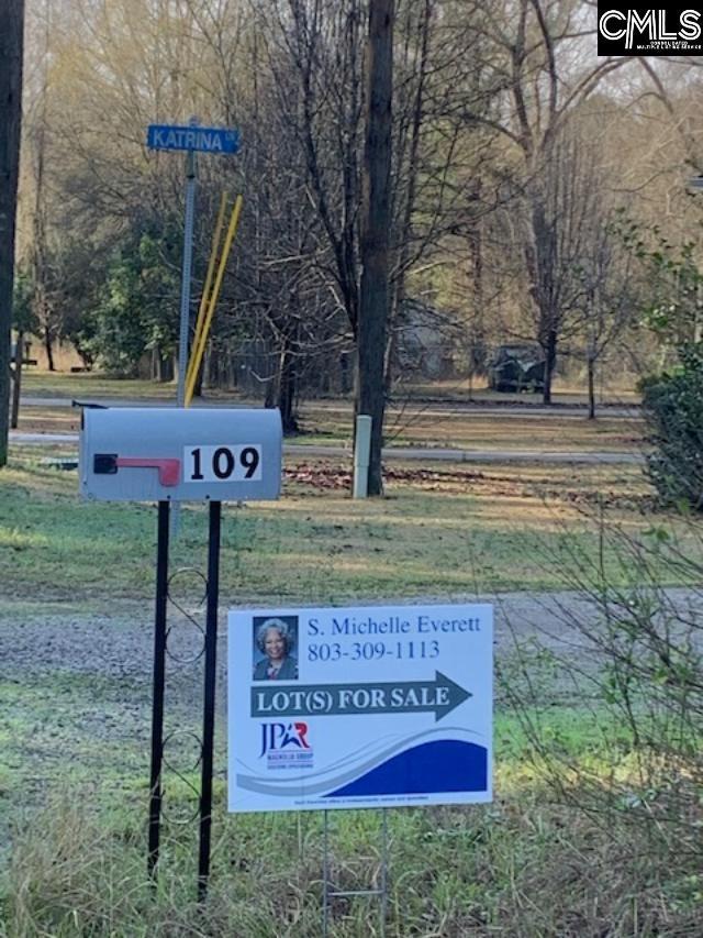 117 Katrina Hopkins, SC 29061