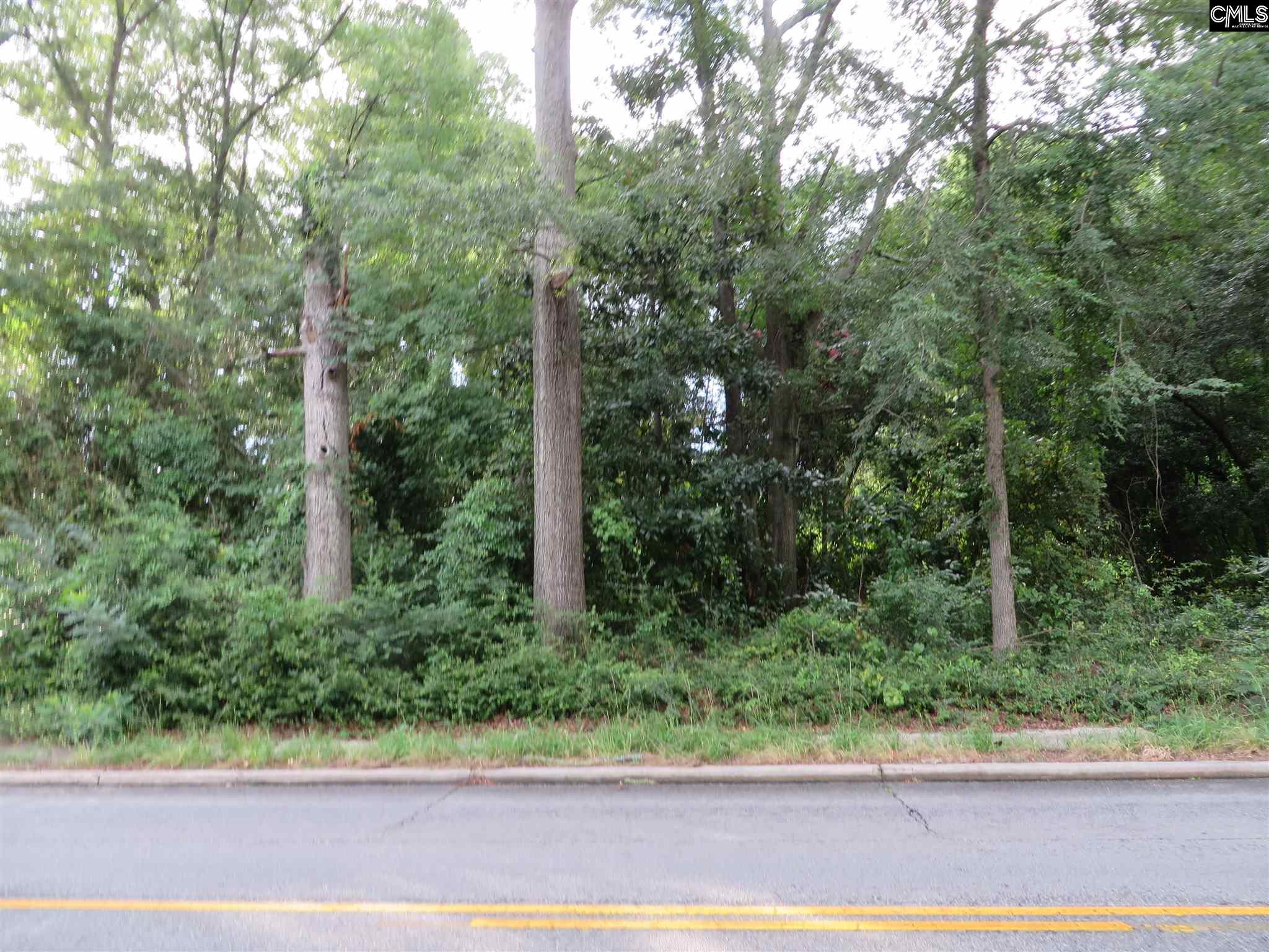 535 W Columbia Avenue Batesburg, SC 29006