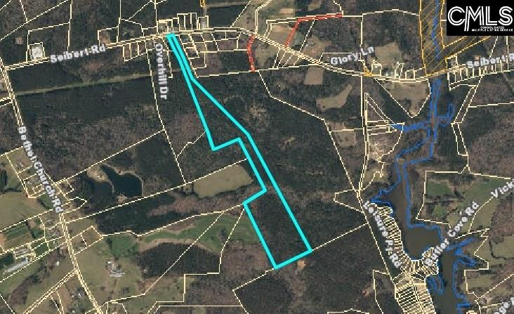 Beautiful 46 acre track in Prosperity. Minutes to gorgeous Lake Murray. Build your dream home or maintain for recreation or income. Easy access to Newberry or the town of Prosperity.