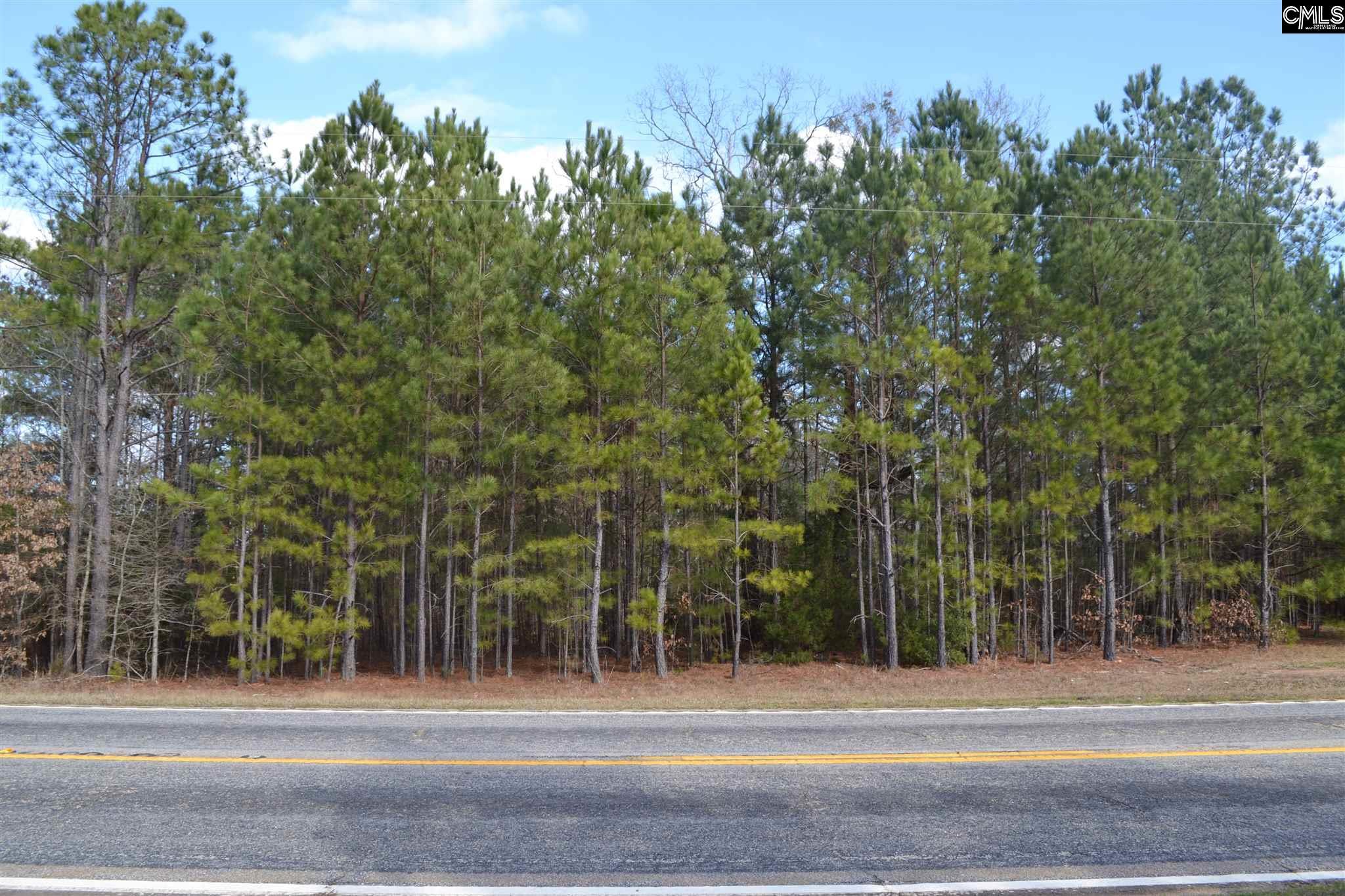 Highway 702 Chappells, SC 29037