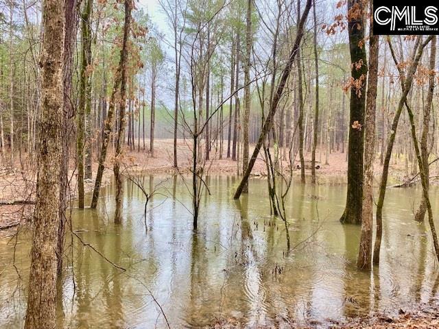 78 Sawney Creek Ridgeway, SC 29130