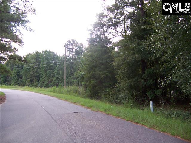 1676 Basehill Hopkins, SC 29061