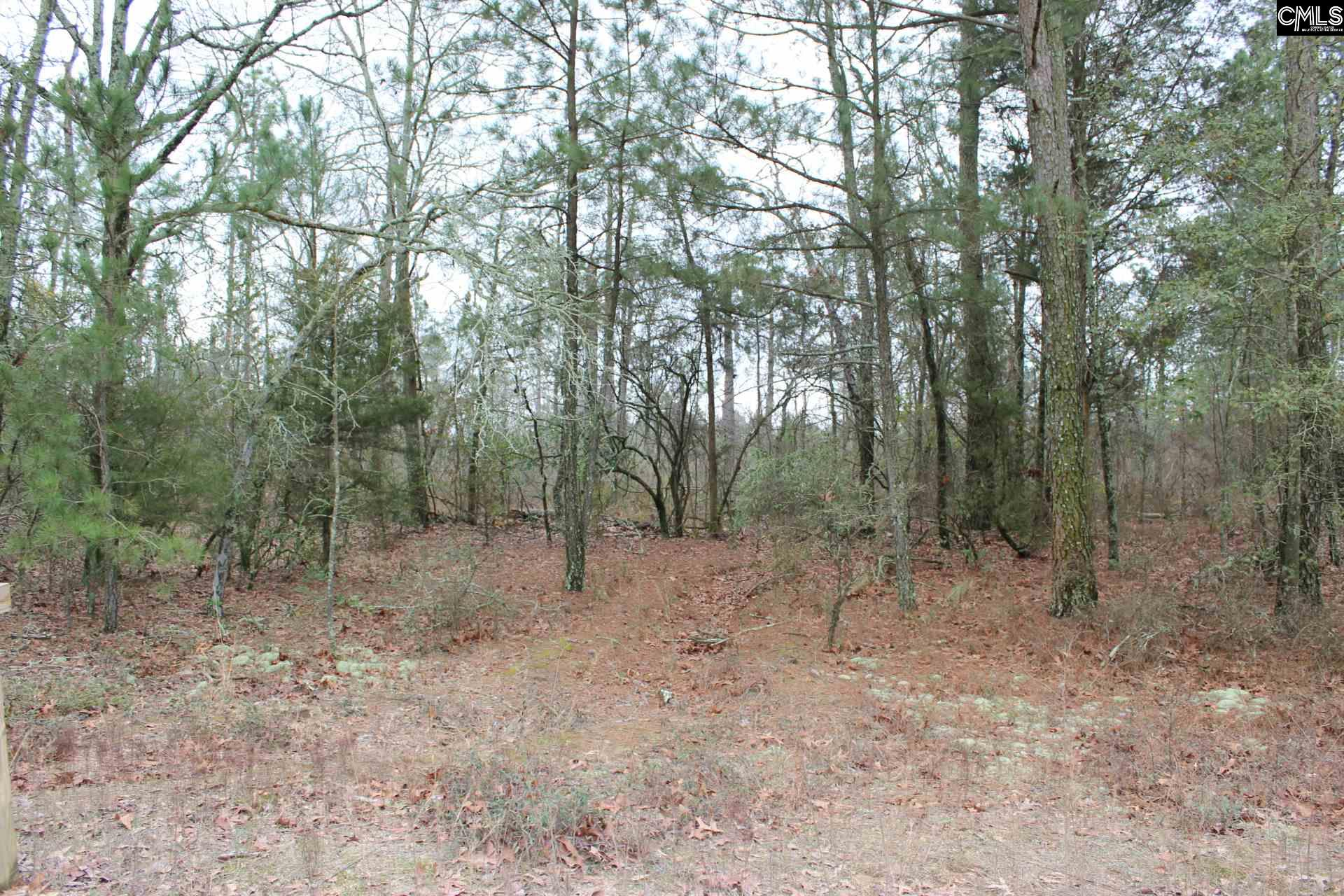 767 Whiskey UNIT Lot 3 & 4A Leesville, SC 29070
