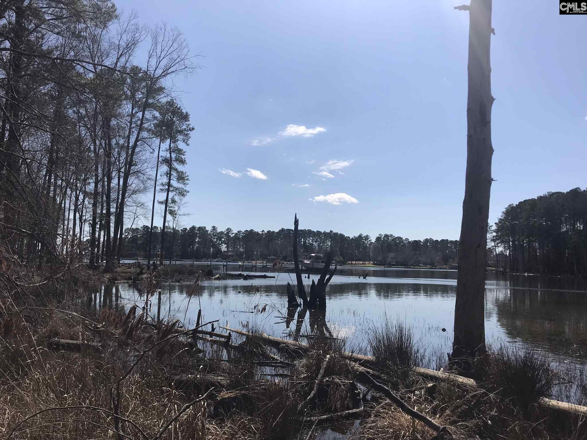 912 Willow Cove Chapin, SC 29036