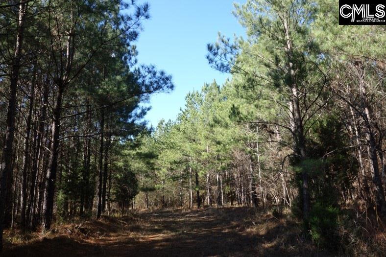 Mt. Hope Ridgeway, SC 29130