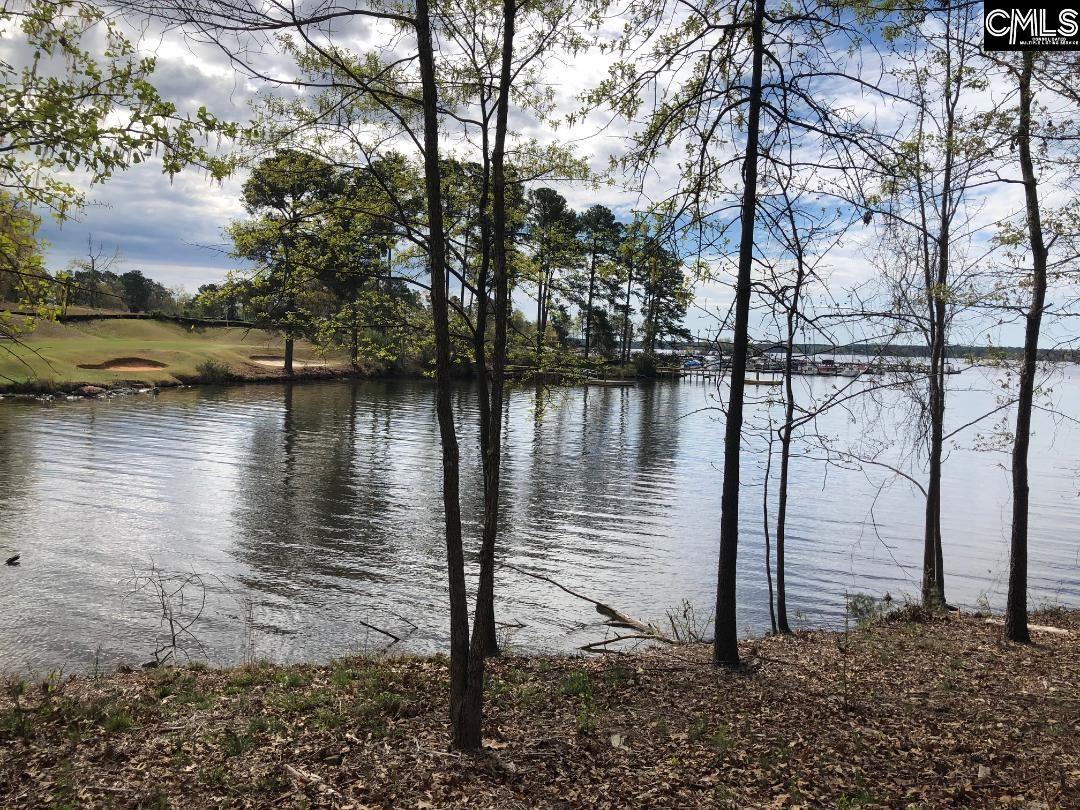 151 Water Links Chapin, SC 29036