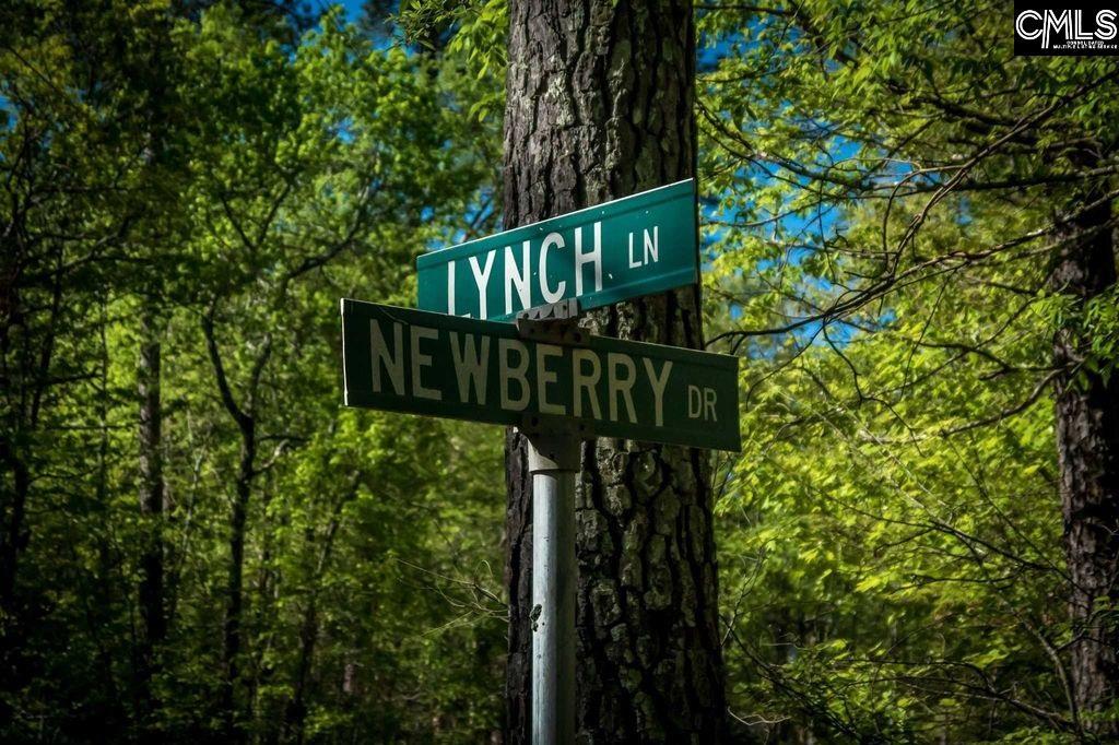 119 Lynch Chapin, SC 29036