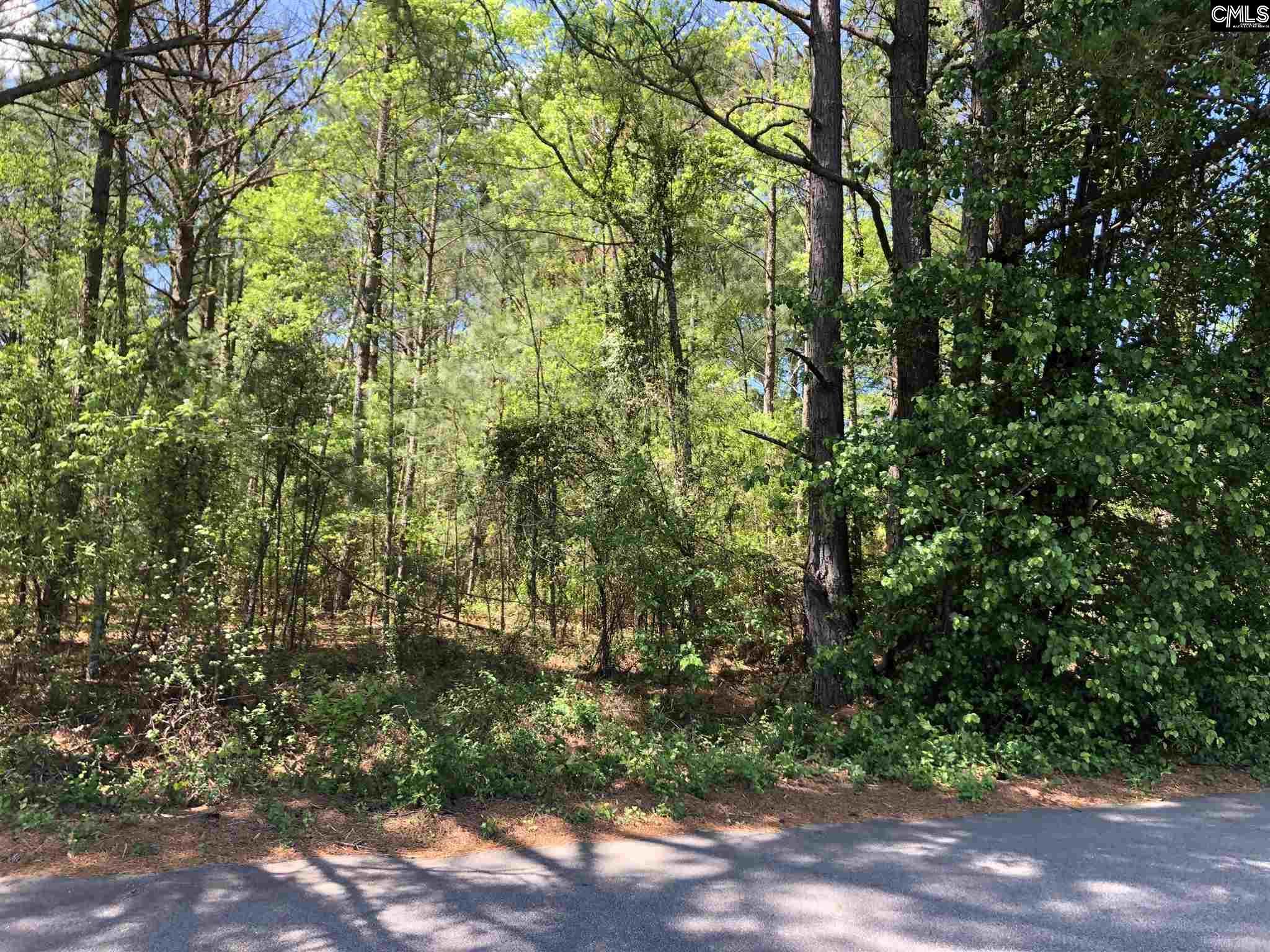 409 Hunting Creek Hopkins, SC 29061