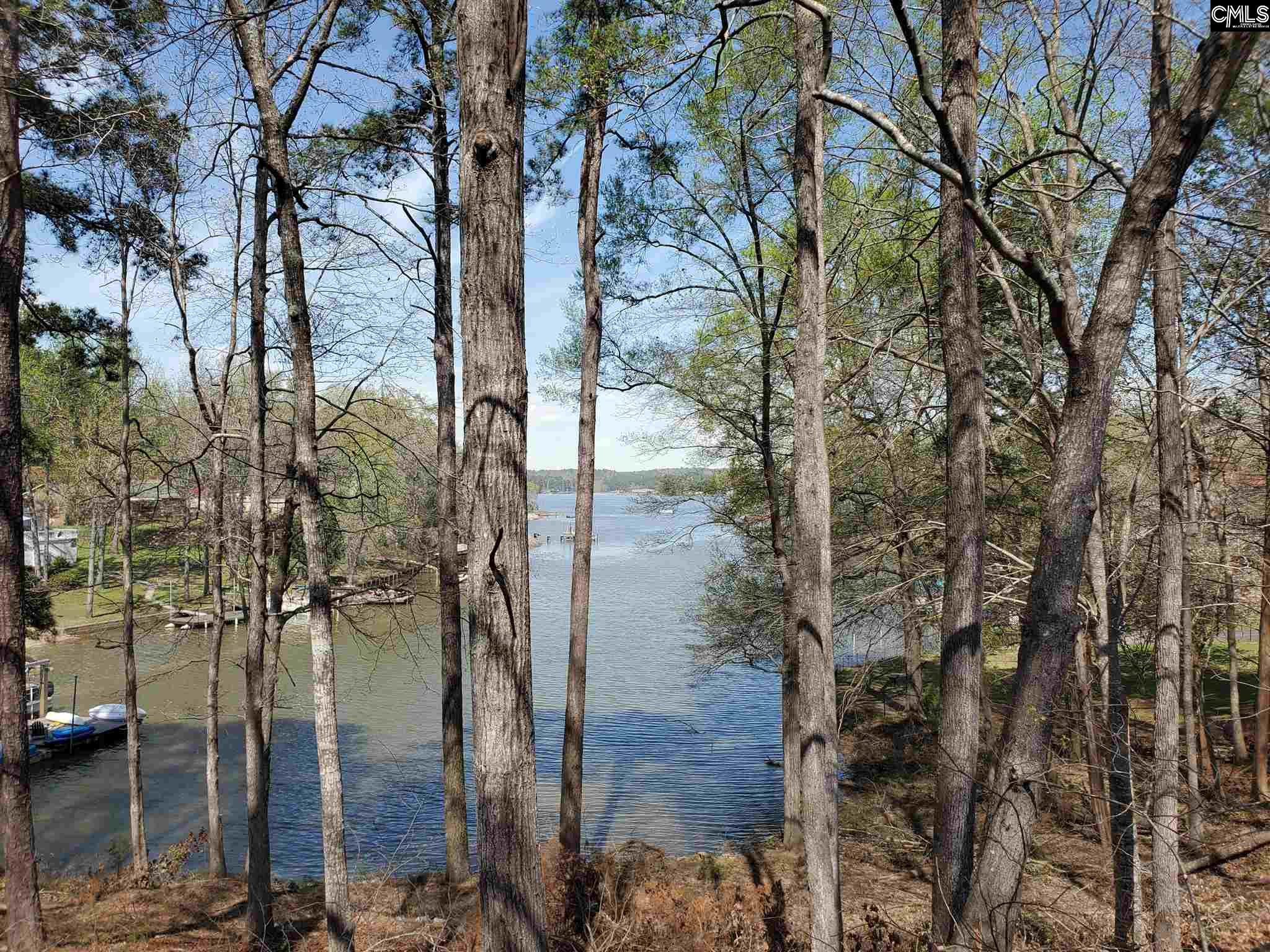 1772 Lake Ridgeway, SC 29130