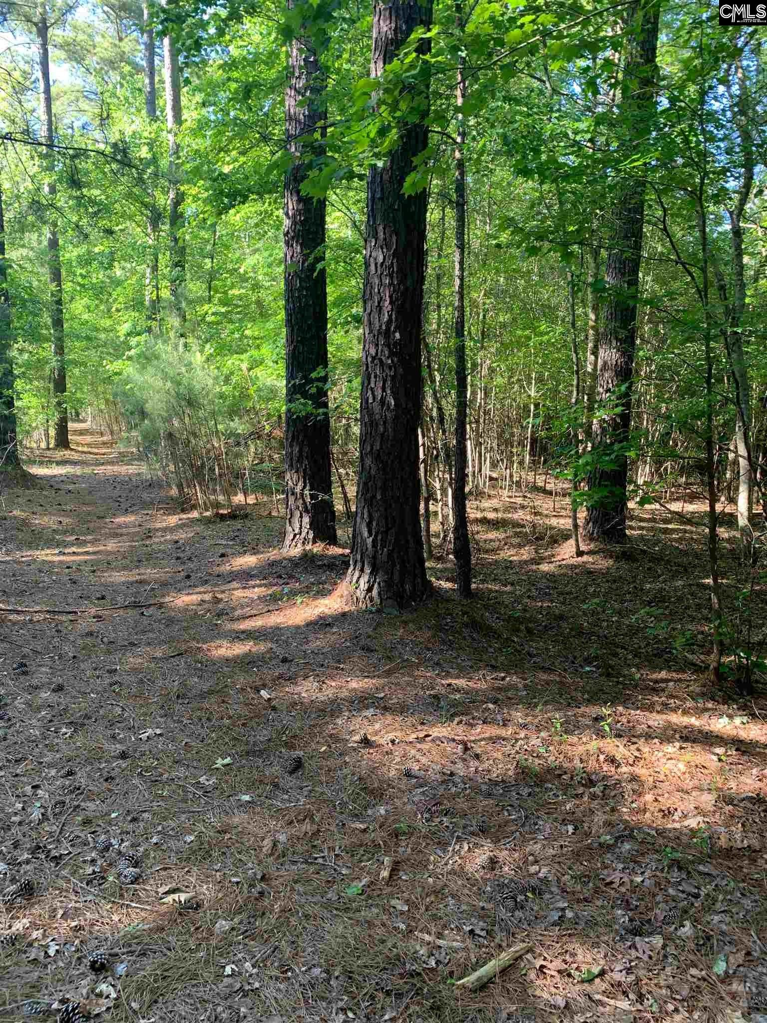 Lot 11 Creekside Lane UNIT Lot 11 Ridgeway, SC 29130