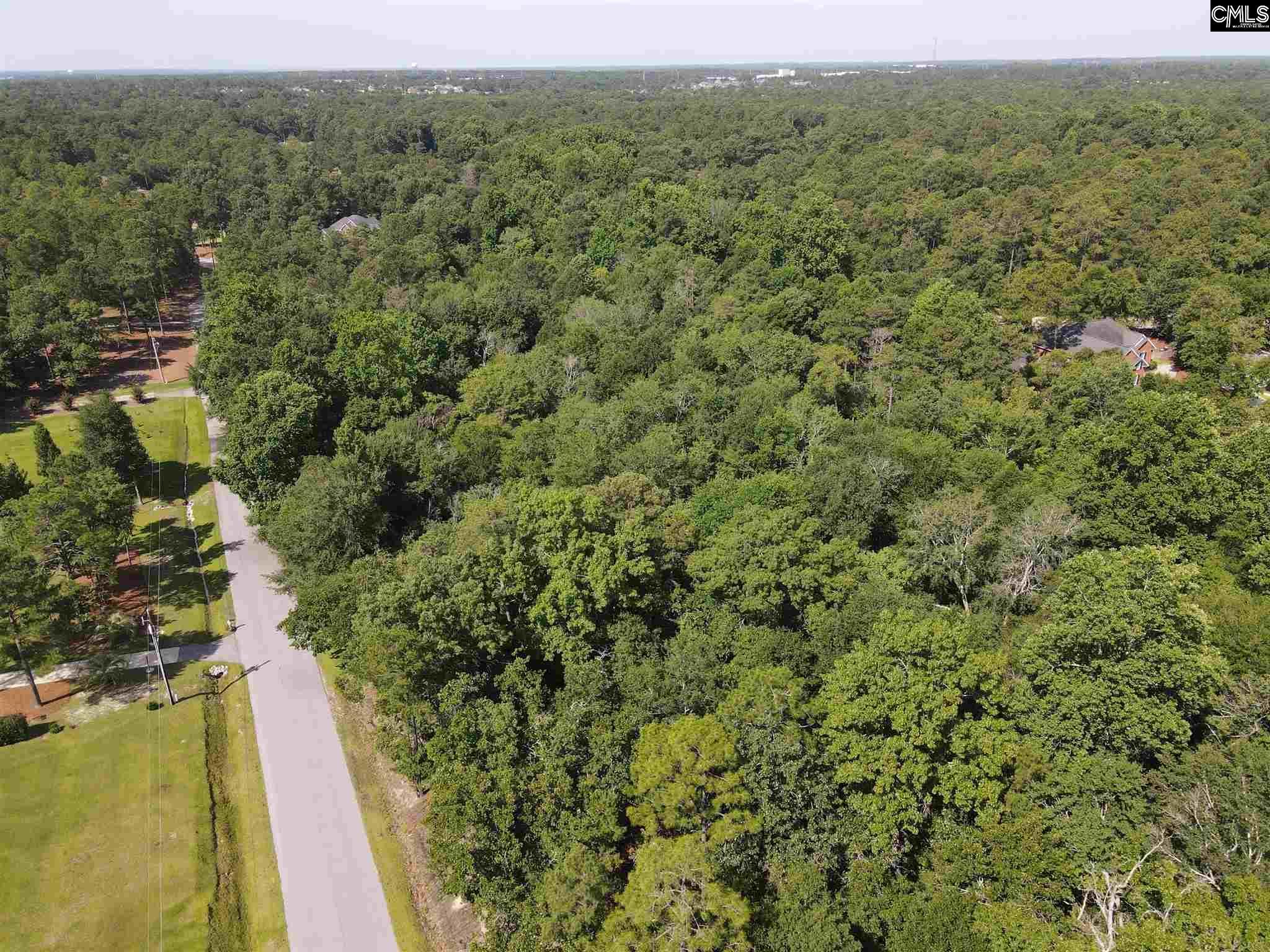 313 Overlook Drive Blythewood, SC 29016