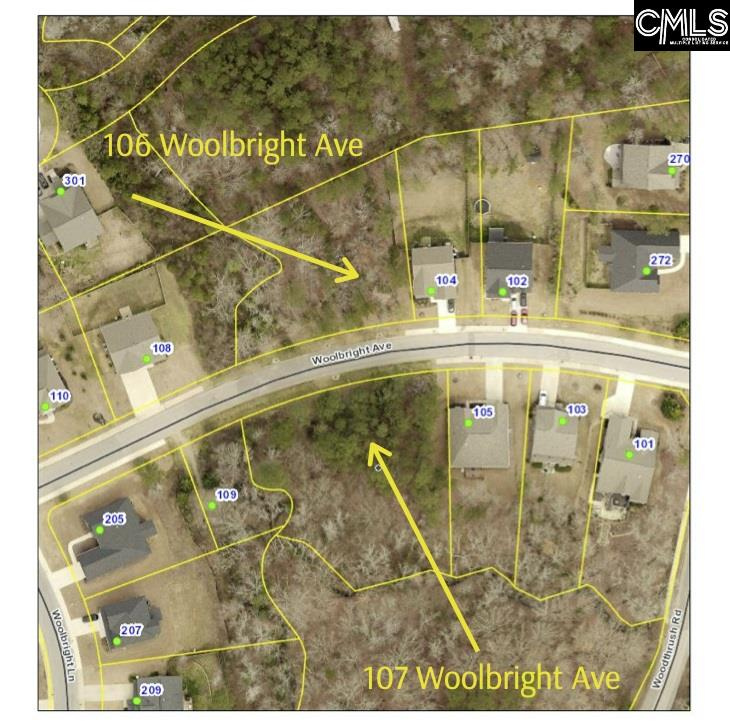 107 Woolbright Chapin, SC 29036