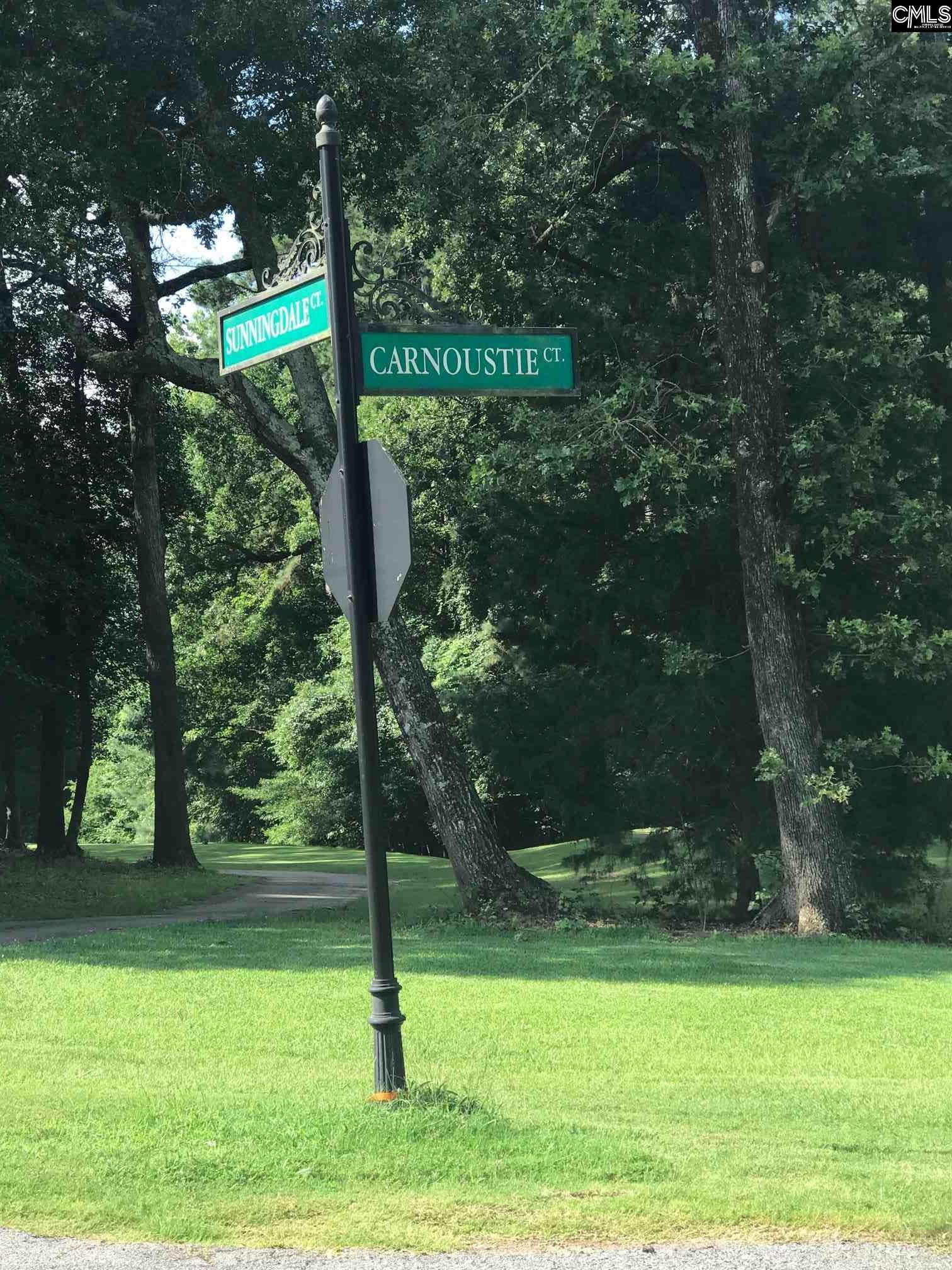 213 Carnouste Court Lexington, SC 29072