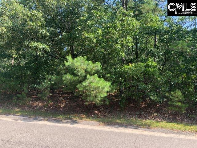 351 Zion Hopewell Gilbert, SC 29054