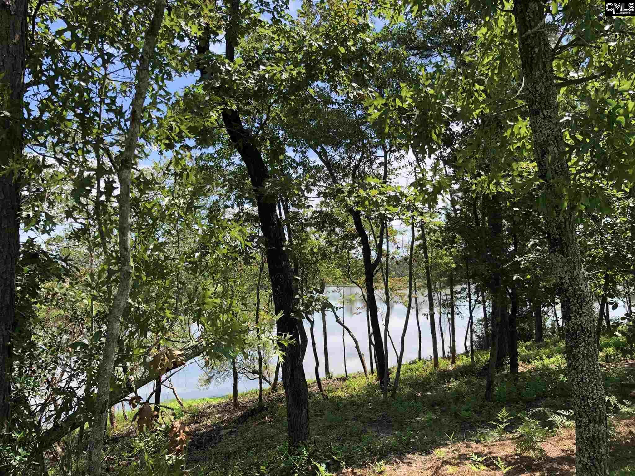 717 Top View Lane Elgin, SC 29045