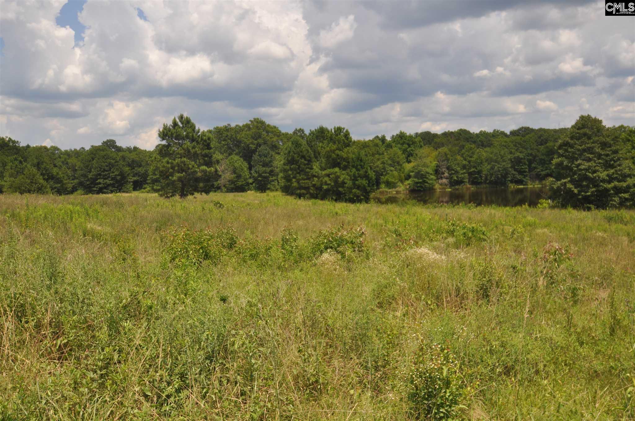 Whitener Rd. /cypress Lakes Newberry, SC 29108