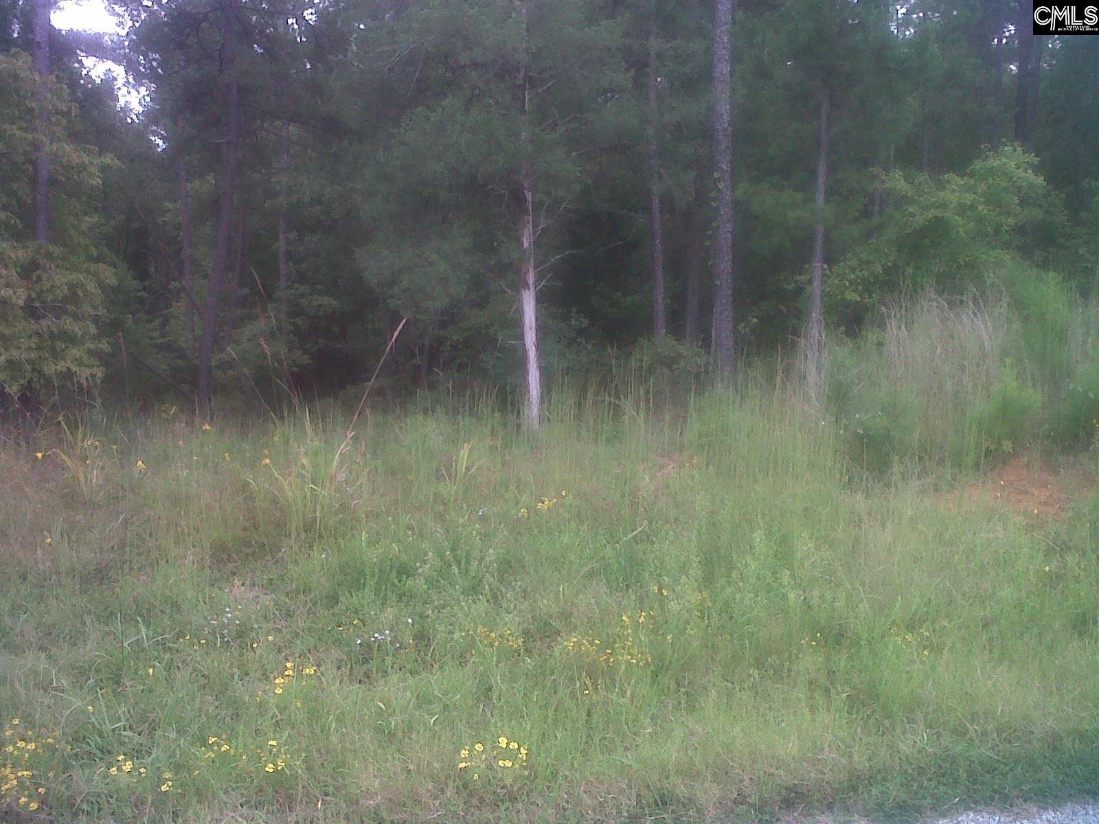 1688 Antioch Cemetery Road Ridgeway, SC 29130