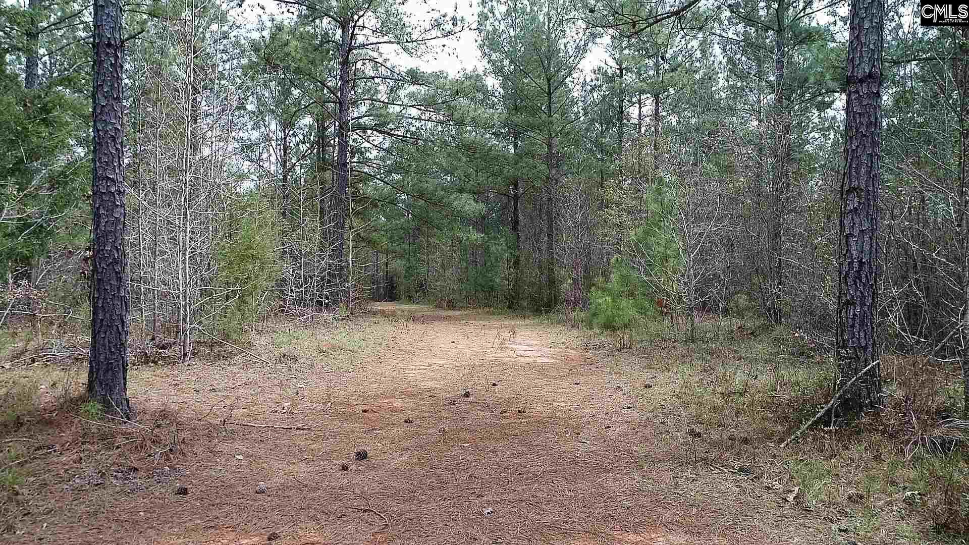 2351 Wheeland Road Little Mountain, SC 29075