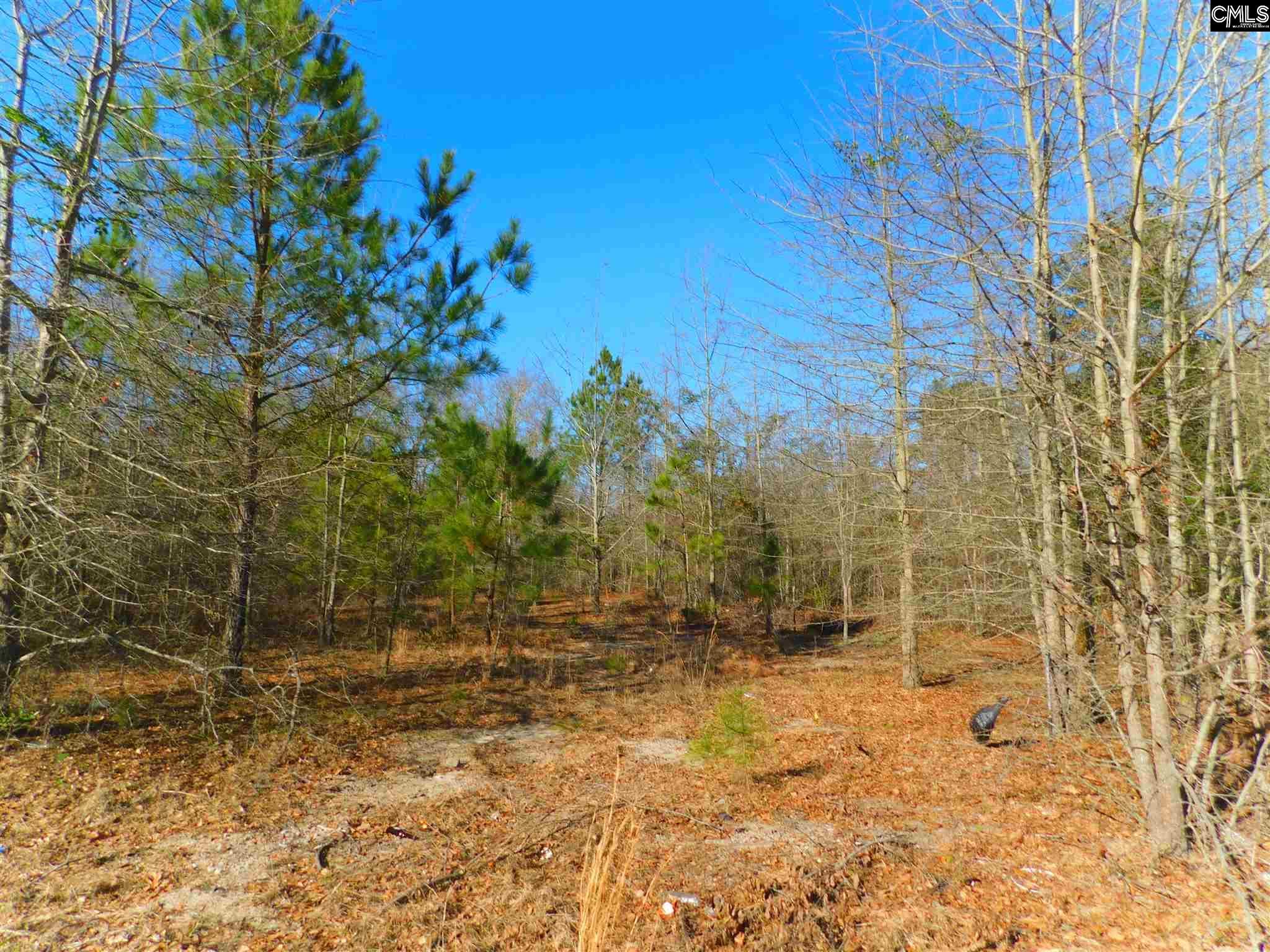 Forest Leesville, SC 29070