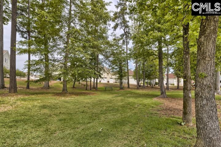 159 Glade Spring Drive Lexington, SC 29072